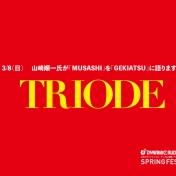 TRIODEDSF2FMID